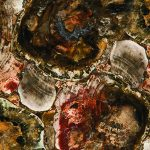 Concetto | 8330 Petrified Wood